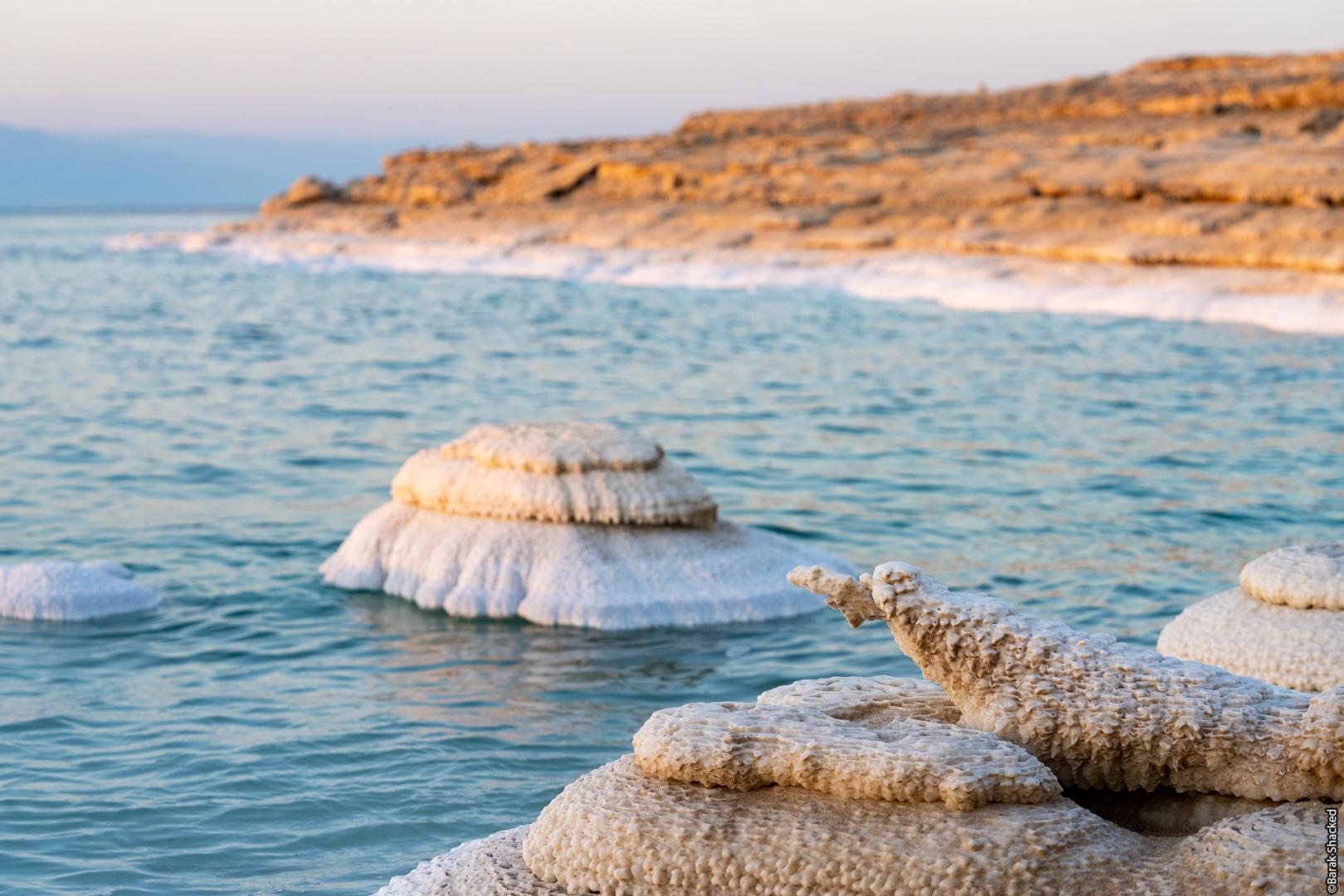 צורות מלח מיוחדות בים המלח